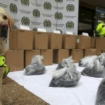 Cocaine disguised as toner seized in Colombia