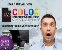 LMI Solutions profit challenge