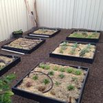 """Creating an extra """"green"""" garden with recycled cartridges"""