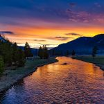 Canon USA recognised for Yellowstone support
