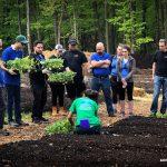 Konica Minolta partners with Arbor Day Foundation