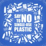Majority of Germans want ban on single-use products
