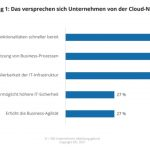 95% of German companies operate cloud computing strategically
